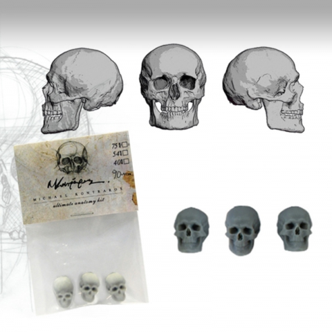 Skulls Set - 90mm _ Michael Kontraros Collectibles